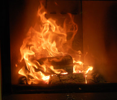 Which types of wood are best to burn in a stove?